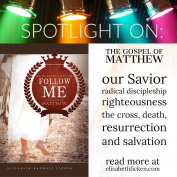 spotlight on matthew 1