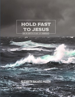 Hold Fast Cover_Finalfront